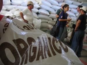 Organic coffee cooperative.