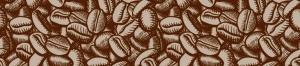 Amavida is proud to be named Best Coffee Roasters of 2018 by Roast Magazine