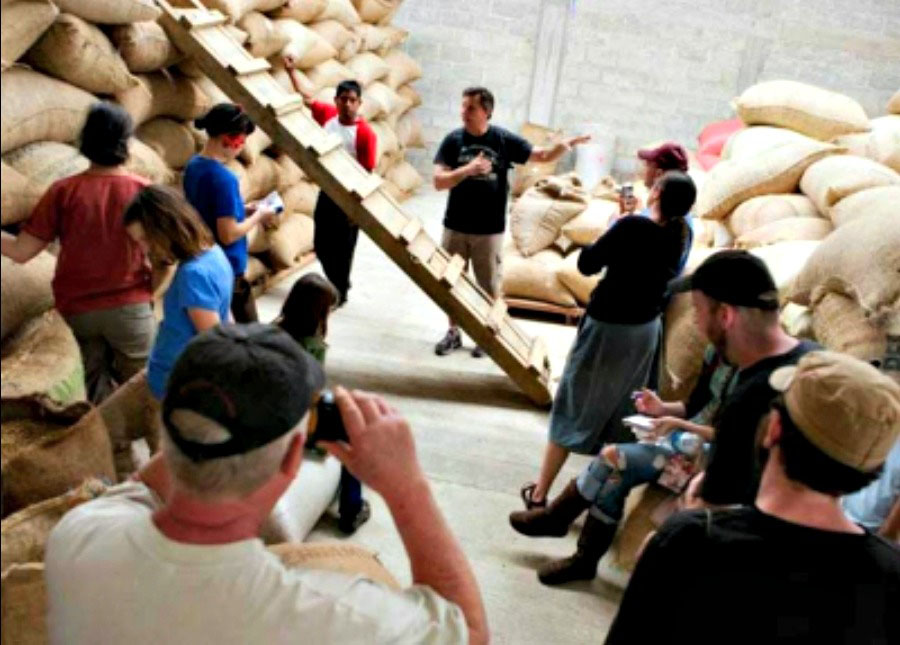 Coffee Trade Creates Sustainable Partnerships