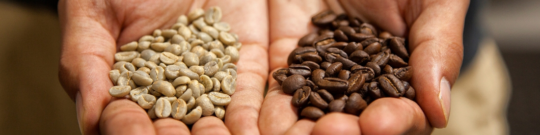 Wholesale Coffee Partner Who's Hands-on