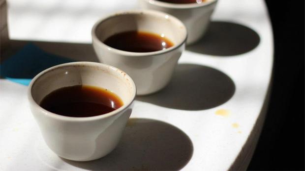 Coffee Class & Cupping at Amavida Coffee Roasters