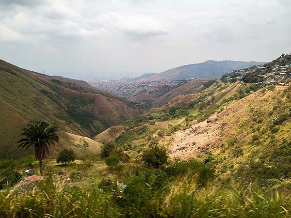 Colombian Coffee Region of the Fondo Paez Cooperative