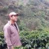 Best Organic Coffee, Peru Honey Process
