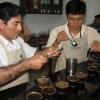 Cupping Honey Process Peru Specialty Coffee