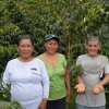Peru Coffee Cooperative with Honey Process Beans