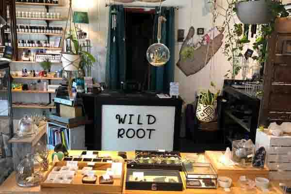 Wild Roots Apothecary and cafe in Florida