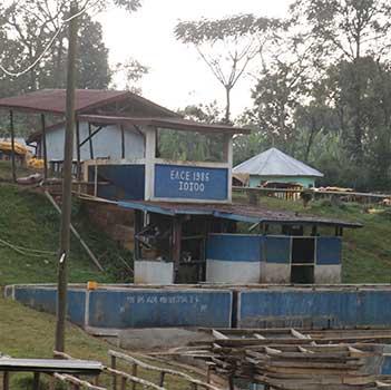 Idido Coffee Cooperative in Ethiopia Yirgacheffe